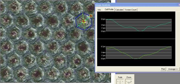 report per controllo e verifica delle celle anilox. Servizio di misurazione periodica del parco anilox dei clienti a domicilio