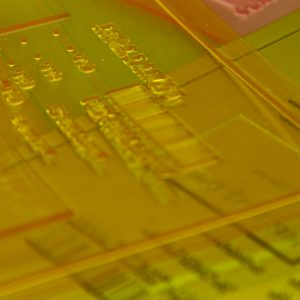 Photopolymer Plates for Embossing
