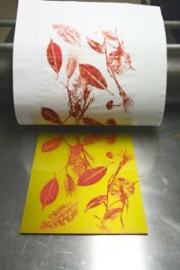 Alessandra Angelini Fase di stampa di matrice fotopolimerica su torchio calcografico realizzata nell'atelier dell'artista